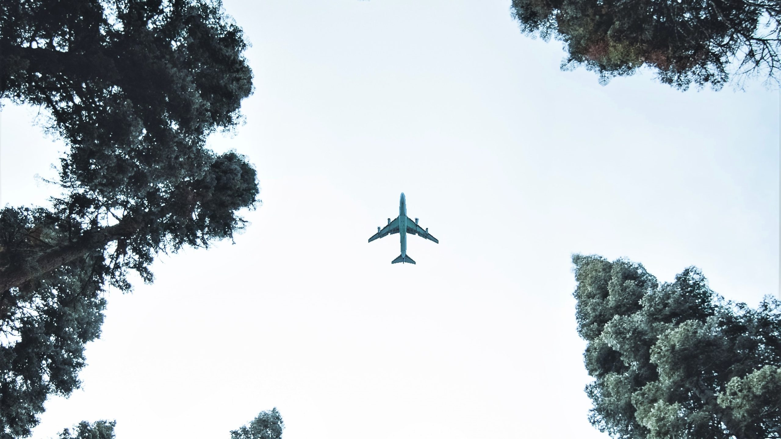 sustainable operations for the aviation sector